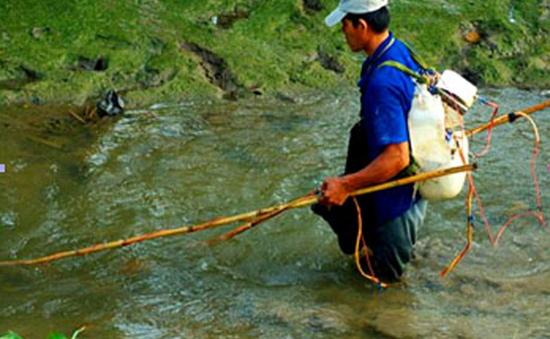 Cần Thơ nghiêm cấm sử dụng xung điện đánh bắt thủy sản