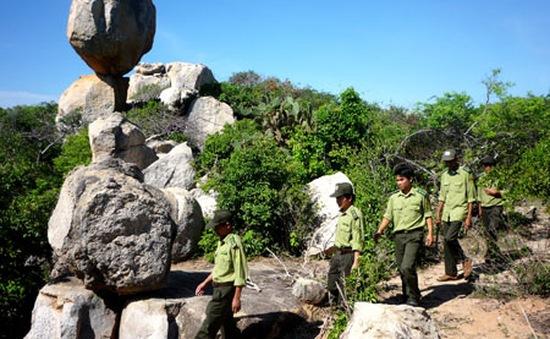 Ninh Thuận: Cán bộ vườn quốc gia Núi Chúa bị đâm chết trong lúc làm nhiệm vụ