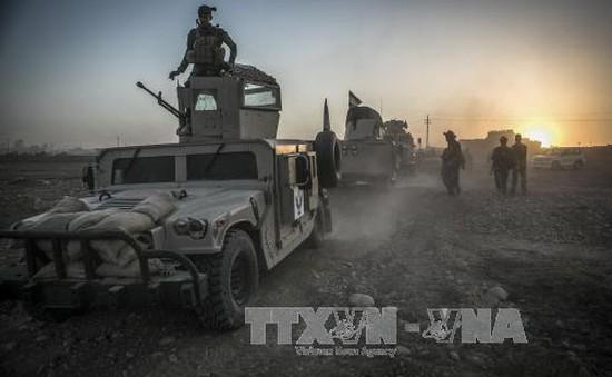 Iraq, Libya giải phóng nhiều khu vực quan trọng khỏi tay IS