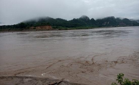 Phú Thọ: Sau bão số 3, nước sông Hồng đã rút