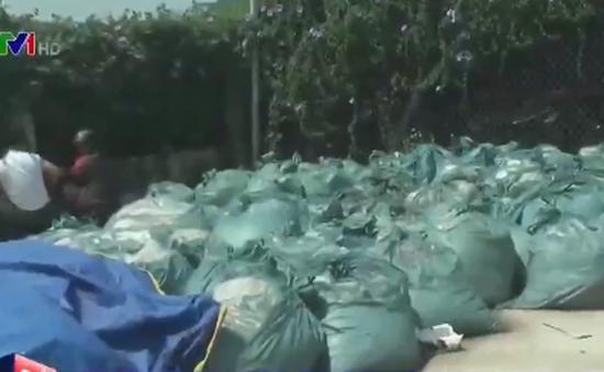 Tiêu hủy 20 tấn măng không đảm bảo an toàn thực phẩm