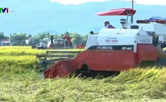Bảo kê máy gặt đập ở Nghệ An: Sai quy định, yêu cầu hoàn trả