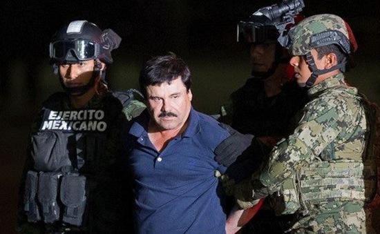 Tổng thống Mexico ca ngợi lực lượng cảnh sát sau vụ bắt trùm ma túy