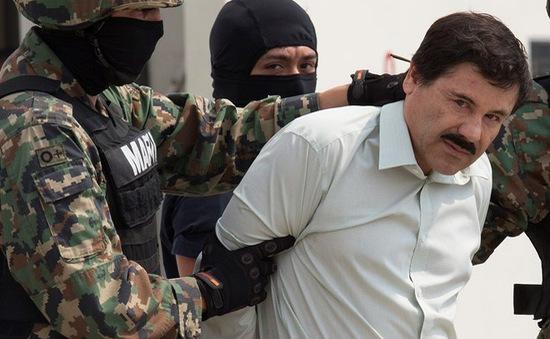Mỹ và Mexico trao đổi về dẫn độ trùm ma túy El Chapo