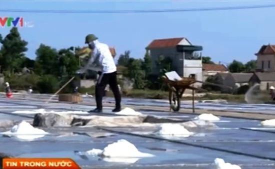 Bến Tre: Sản xuất lạc hậu khiến nghề muối gặp khó