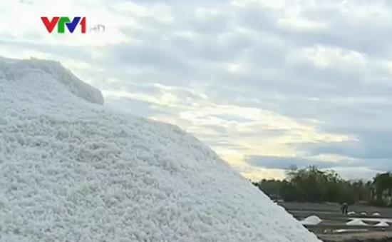 Bạc Liêu tồn đọng gần 170.000 tấn muối