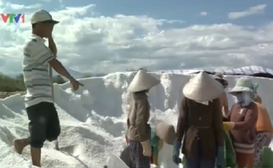 Các địa phương ven biển Nam Trung Bộ đề xuất mua tạm trữ muối