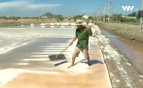 Chưa thống nhất được phương thức mua muối tạm trữ