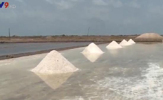 Bạc Liêu:  Tạm trữ gần 1 tháng, diêm dân vẫn không bán được muối