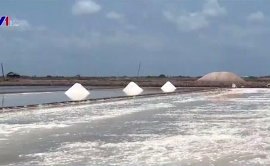 Ưu tiên mua tạm trữ muối ở địa phương có tồn đọng lớn
