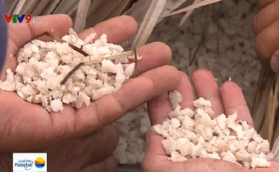 Bạc Liêu tồn đọng 60.000 tấn muối đen dù đã thu mua tạm trữ