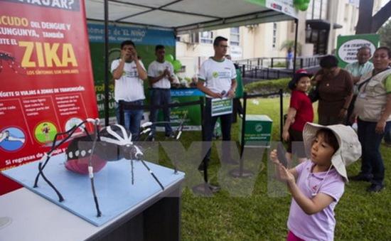 Mỹ đẩy nhanh phát triển vaccine phòng ngừa virus Zika