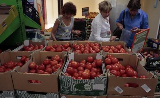 Nga cải cách kinh tế theo hướng tăng cường xuất khẩu
