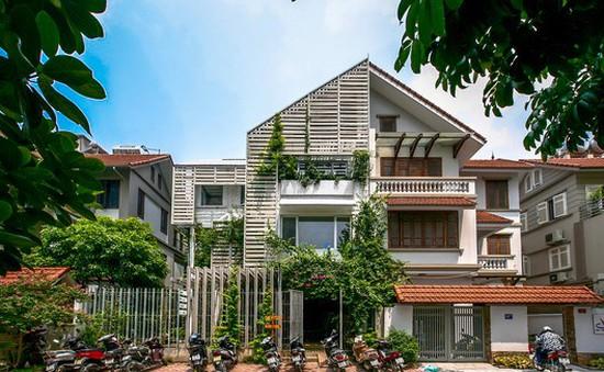 Ngắm văn phòng xanh tuyệt đẹp giữa Hà Nội