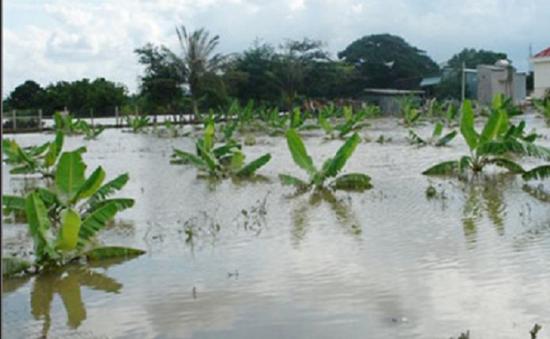 Liên tục xảy ra thiệt mạng và mất tích vì lũ tại Bình Thuận