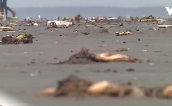 Bãi biển thành... bãi rác sau kỳ nghỉ lễ
