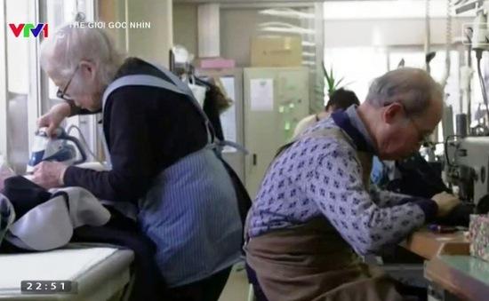 """Lao động """"tóc bạc"""" giải quyết khó khăn thiếu nhân công tại Nhật Bản"""
