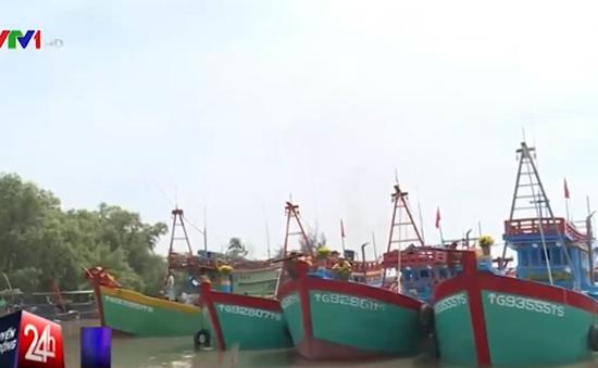 Ngư dân Tiền Giang hối hả chuẩn bị ra khơi đầu năm
