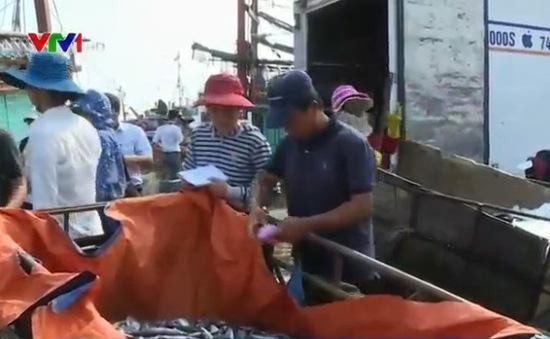 Quảng Trị: Tiếp tục triển khai hỗ trợ ngư dân