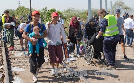 Hungary biểu tình trước cuộc bỏ phiếu về hạn ngạch nhập cư