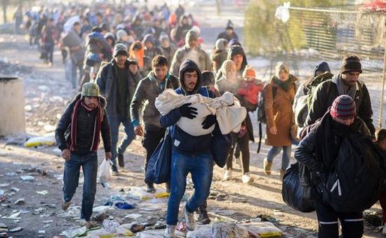 1 triệu người tị nạn có thể đến châu Âu năm 2016