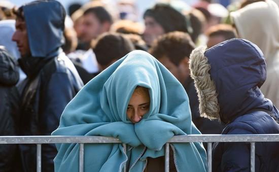 Áo thông qua luật siết chặt kiểm soát người tị nạn