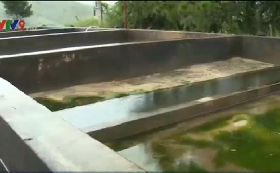 Nhà máy nước sạch duy nhất ở huyện Khánh Sơn xuống cấp nghiêm trọng