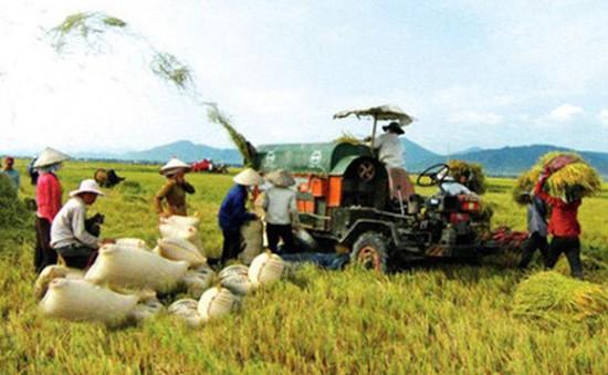 Lợi ích từ hợp tác nông nghiệp Việt Nam - Philippines