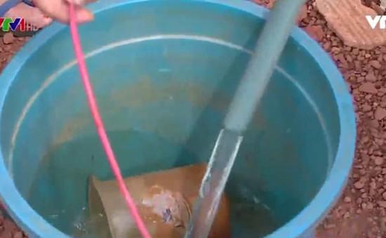Hàng nghìn hộ dân tại Bình Phước thiếu nước sinh hoạt
