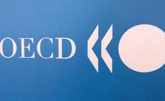 30 quốc gia OECD ký kết thỏa thuận về chống thất thu thuế