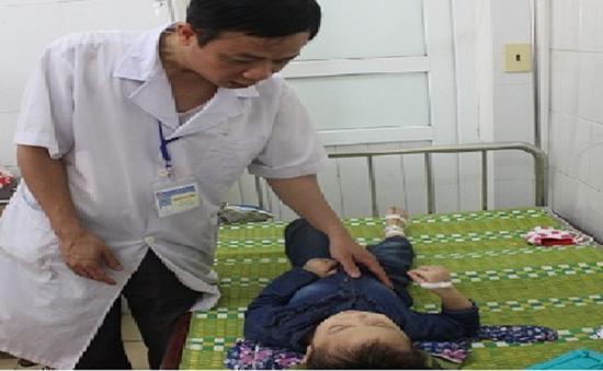 Nghệ An: Ong đốt làm 18 cô trò phải nhập viện