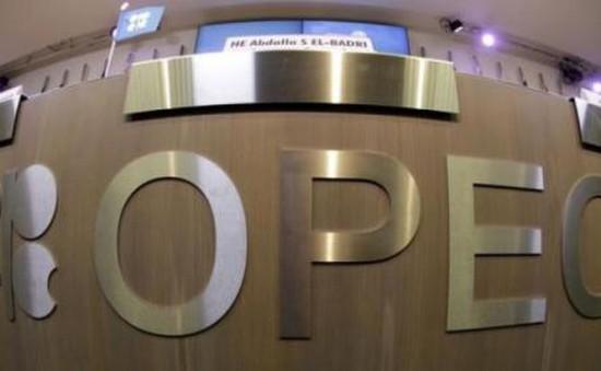 OPEC sẽ triệu tập cuộc họp tìm cách bình ổn thị trường dầu mỏ