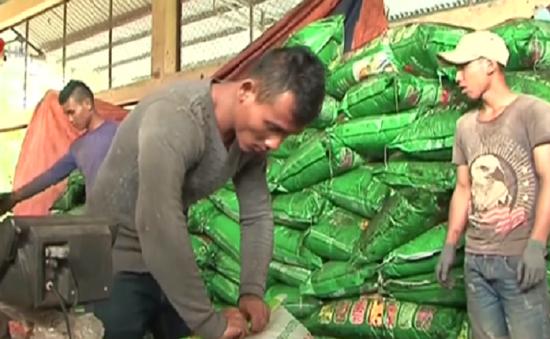 Bắt cơ sở sản xuất hàng chục tấn phân bón giả tại Lâm Đồng