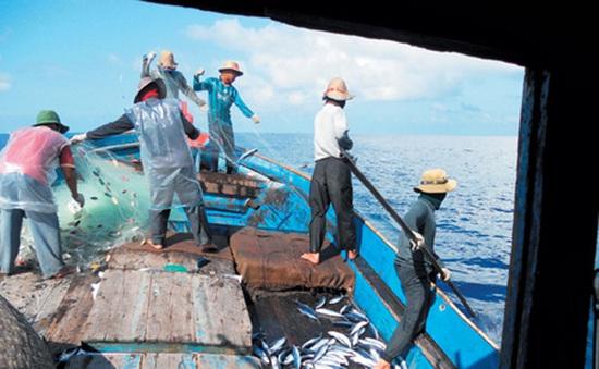 Phản đối Trung Quốc đơn phương cấm đánh bắt cá trên Biển Đông
