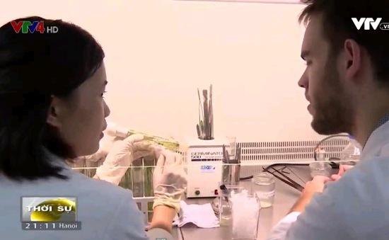 Thúc đẩy hợp tác khoa học Pháp - Việt