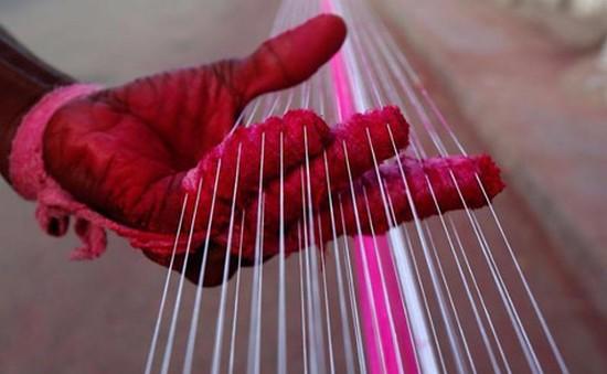 Ấn Độ: New Delhi cấm bán dây diều làm chết người