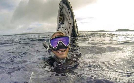 """Gây """"sốt"""" với bức ảnh tự sướng với cá voi"""