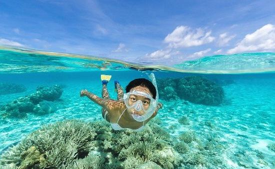Khám phá những vịnh biển nước trong vắt như pha lê
