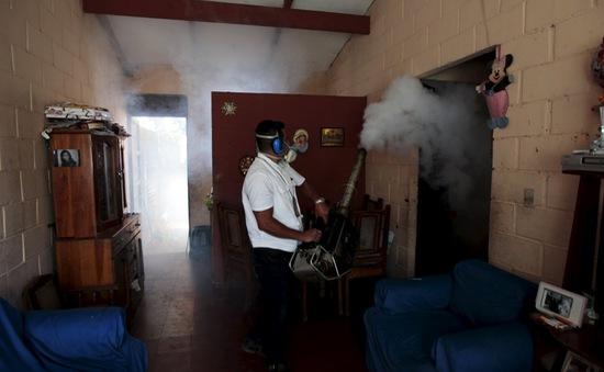 WHO cảnh báo virus Zika lây lan khắp châu Mỹ