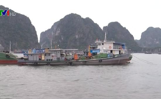 Quảng Ninh bắn pháo hiệu gọi tàu thuyền tránh bão số 7