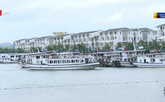 Quảng Ninh, Hải Phòng và Thái Bình chuẩn bị ứng phó bão số 1