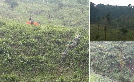 Rơi máy bay quân sự tại Ecuador, 22 người thiệt mạng