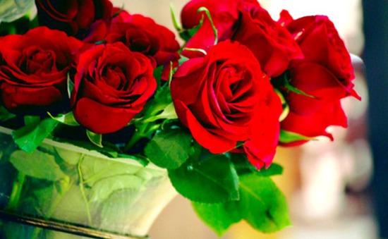 Hoa hồng có tác dụng làm trắng da