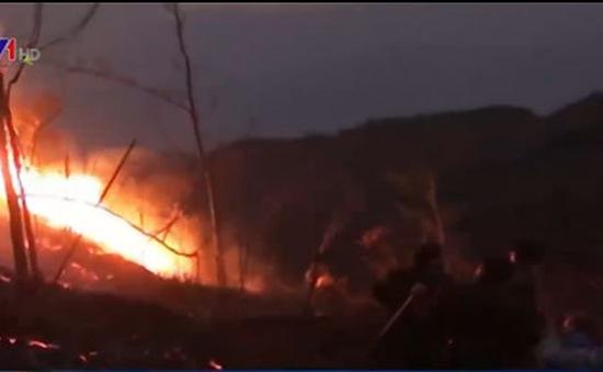 Dập tắt đám cháy tại vườn quốc gia Hoàng Liên