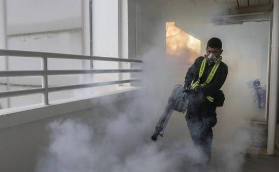 16 phụ nữ mang thai nhiễm Zika tại Singapore
