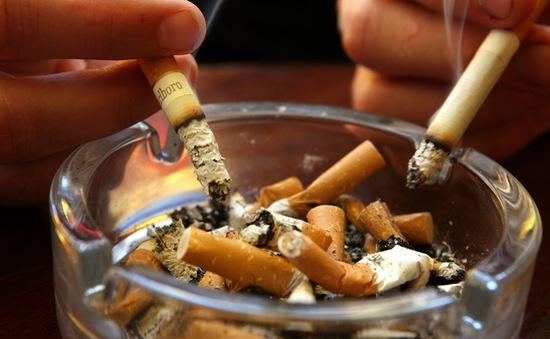 TP.HCM chính thức cấm công chức hút thuốc nơi công sở