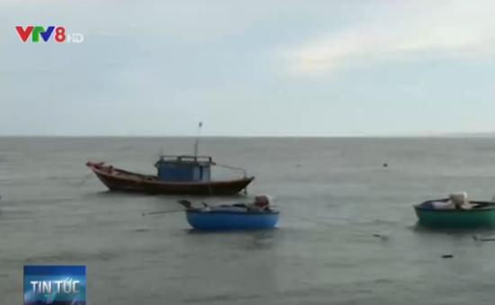 Đã tìm thấy tàu cá cùng 6 thuyền viên mất tích