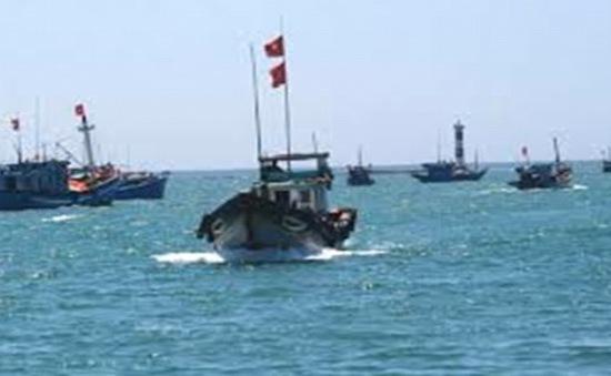 96 tàu cá ra khơi theo Nghị định 67