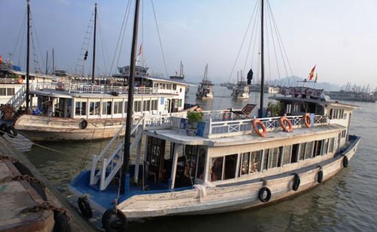 Sẽ có tiêu chuẩn riêng đối với tàu thuyền du lịch