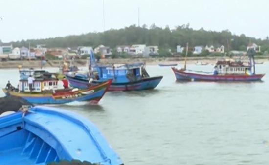 Hơn 200 ngư dân Quảng Ngãi vẫn trong vùng nguy hiểm